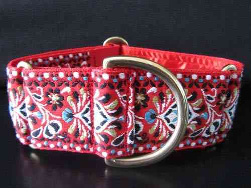 Martingale Collar 50mm - Carnival (B)