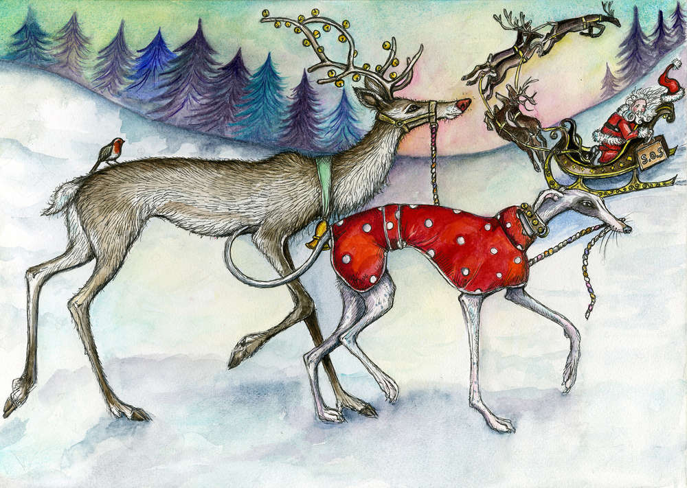 Reindeer Christmas Cards.Walking The Red Nosed Reindeer Christmas Cards A6