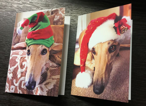 Christmas Cards - Ben and Poppy