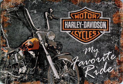Harley Davidson - my favorite ride