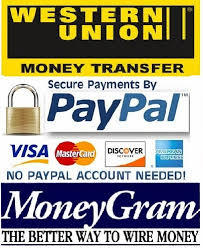 A-FREE-CAN.COM_logo_payment_paypal_western_union_moneygram_wu_cb_visa_maestro_mastercard_american_express_discover